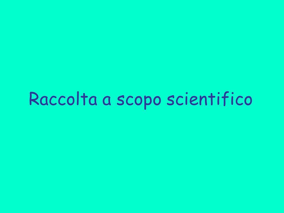 Raccolta a scopo scientifico