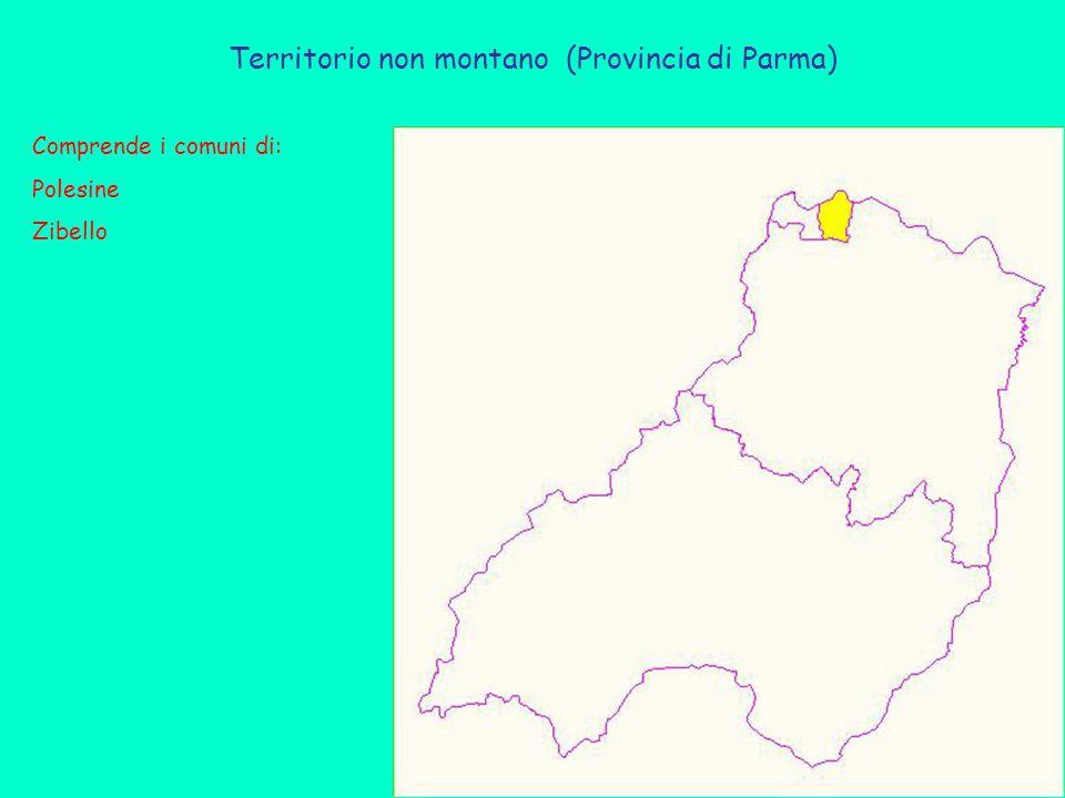 Territorio non montano (Provincia di Parma) Comprende i comuni di: Polesine Zibello