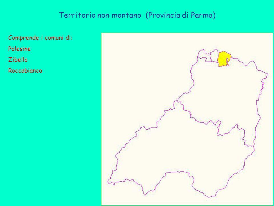 Territorio non montano (Provincia di Parma) Comprende i comuni di: Polesine Zibello Roccabianca
