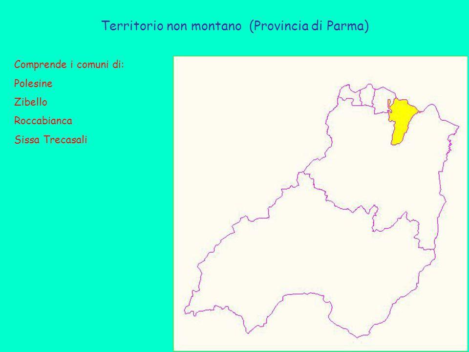 Territorio non montano (Provincia di Parma) Comprende i comuni di: Polesine Zibello Roccabianca Sissa Trecasali