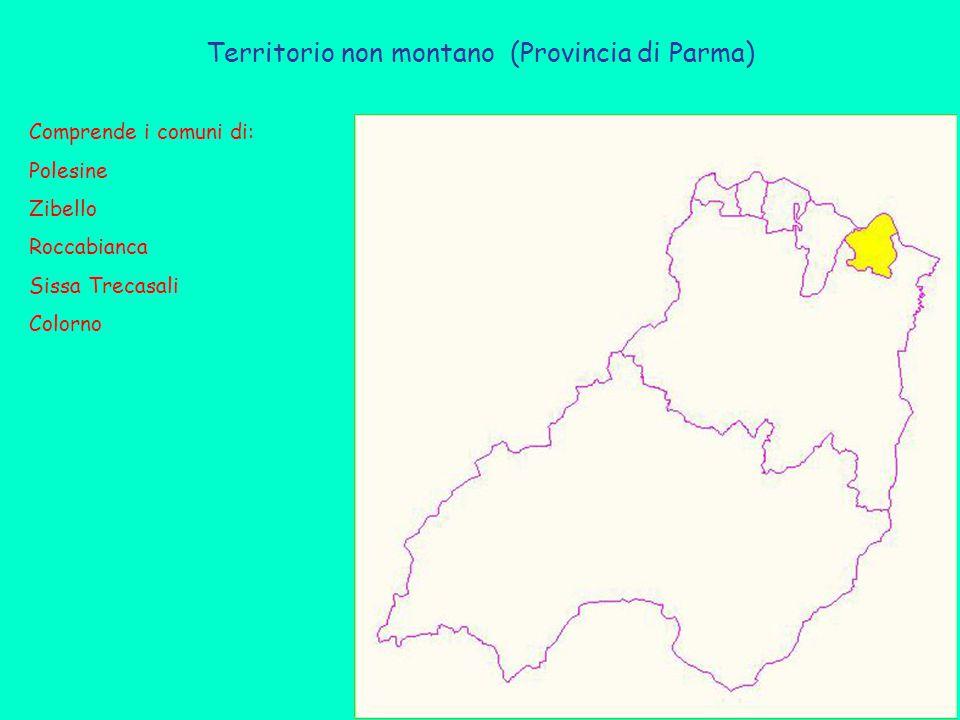 Territorio non montano (Provincia di Parma) Comprende i comuni di: Polesine Zibello Roccabianca Sissa Trecasali Colorno