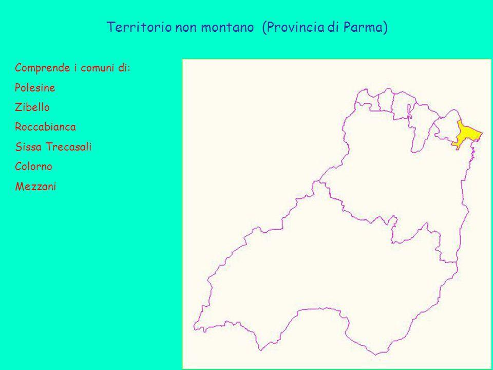 Territorio non montano (Provincia di Parma) Comprende i comuni di: Polesine Zibello Roccabianca Sissa Trecasali Colorno Mezzani