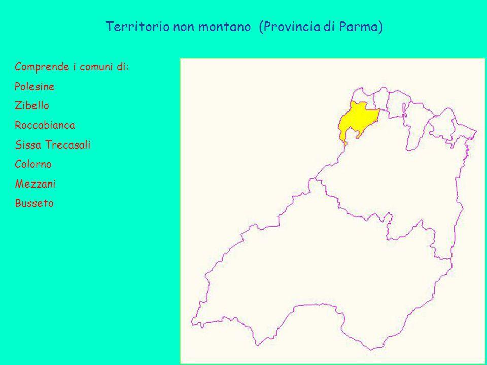 Territorio non montano (Provincia di Parma) Comprende i comuni di: Polesine Zibello Roccabianca Sissa Trecasali Colorno Mezzani Busseto