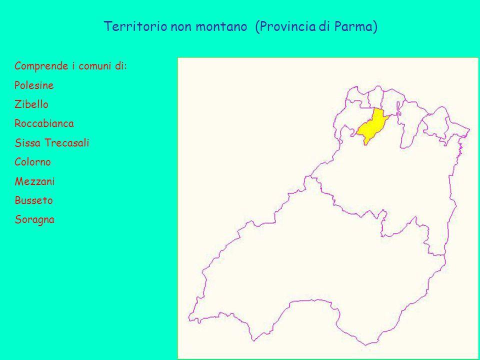 Territorio non montano (Provincia di Parma) Comprende i comuni di: Polesine Zibello Roccabianca Sissa Trecasali Colorno Mezzani Busseto Soragna