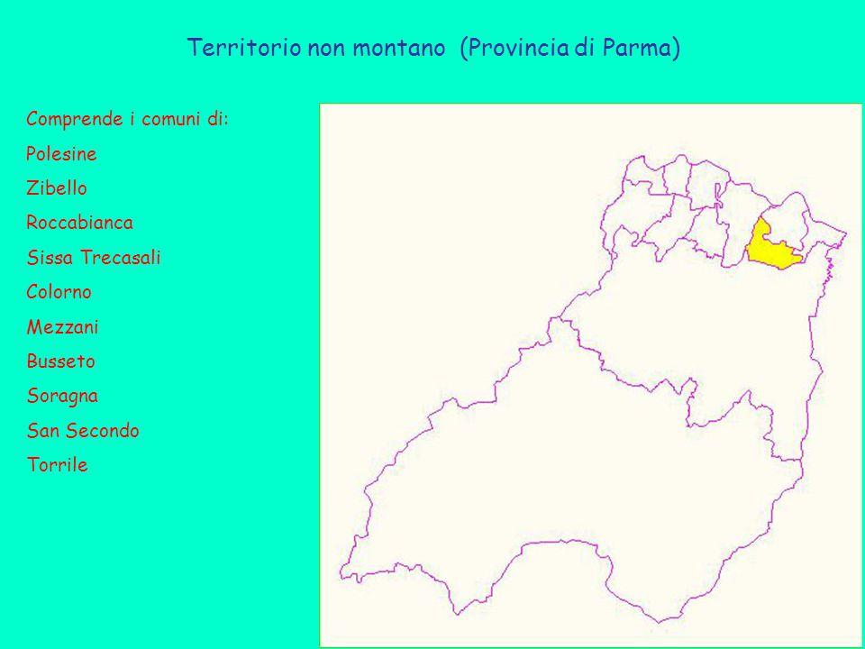 Territorio non montano (Provincia di Parma) Comprende i comuni di: Polesine Zibello Roccabianca Sissa Trecasali Colorno Mezzani Busseto Soragna San Secondo Torrile
