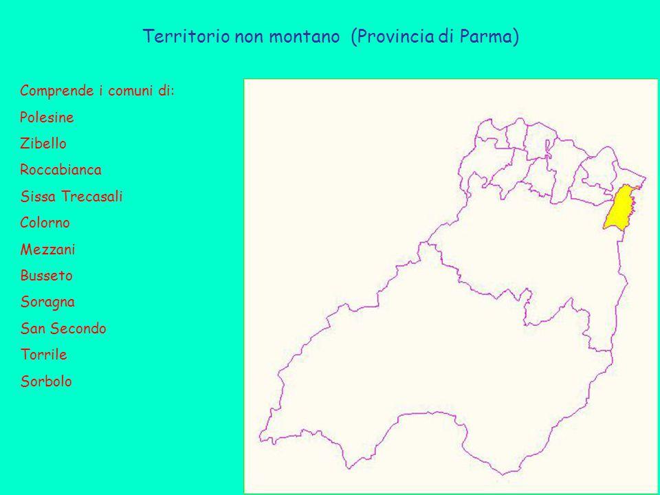 Territorio non montano (Provincia di Parma) Comprende i comuni di: Polesine Zibello Roccabianca Sissa Trecasali Colorno Mezzani Busseto Soragna San Secondo Torrile Sorbolo