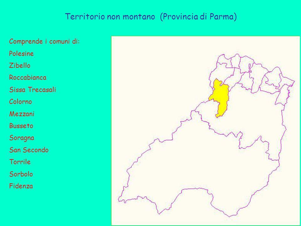 Territorio non montano (Provincia di Parma) Comprende i comuni di: Polesine Zibello Roccabianca Sissa Trecasali Colorno Mezzani Busseto Soragna San Secondo Torrile Sorbolo Fidenza