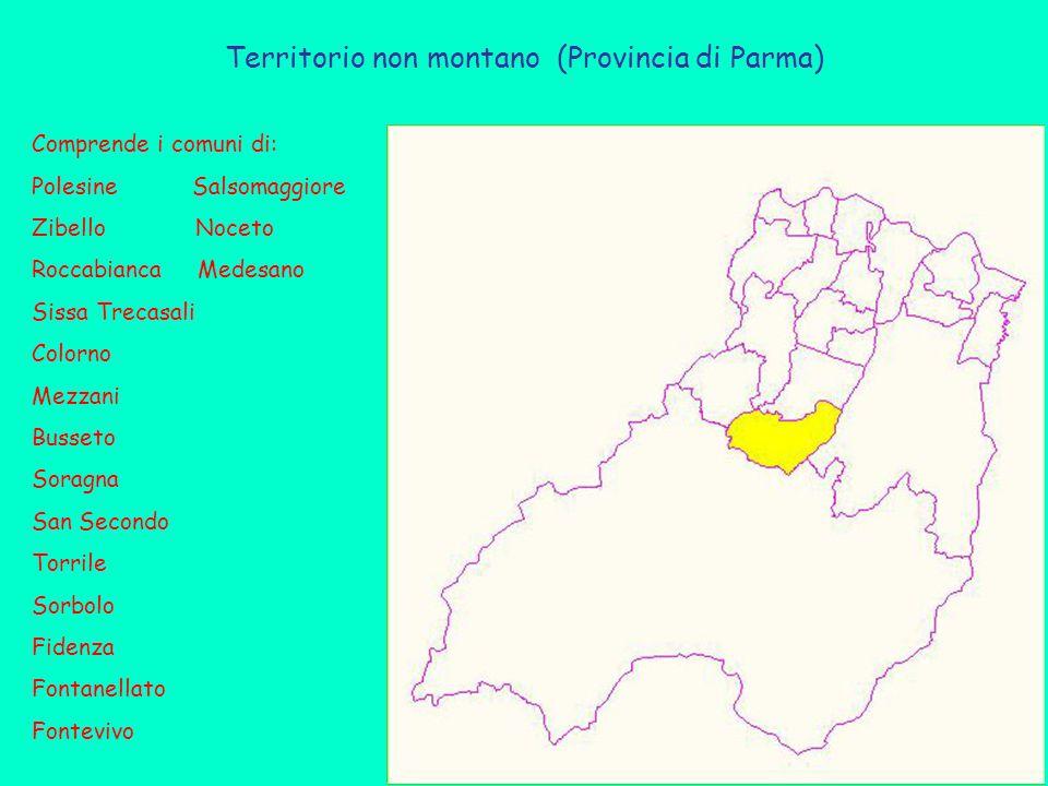 Territorio non montano (Provincia di Parma) Comprende i comuni di: Polesine Salsomaggiore Zibello Noceto Roccabianca Medesano Sissa Trecasali Colorno