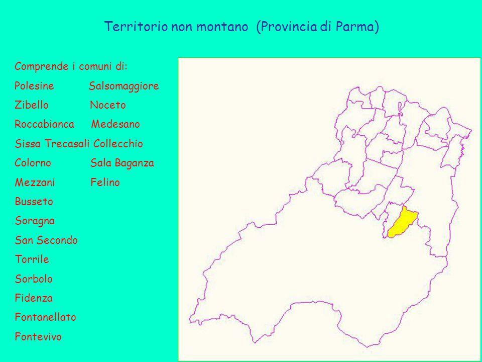 Territorio non montano (Provincia di Parma) Comprende i comuni di: Polesine Salsomaggiore Zibello Noceto Roccabianca Medesano Sissa Trecasali Collecch