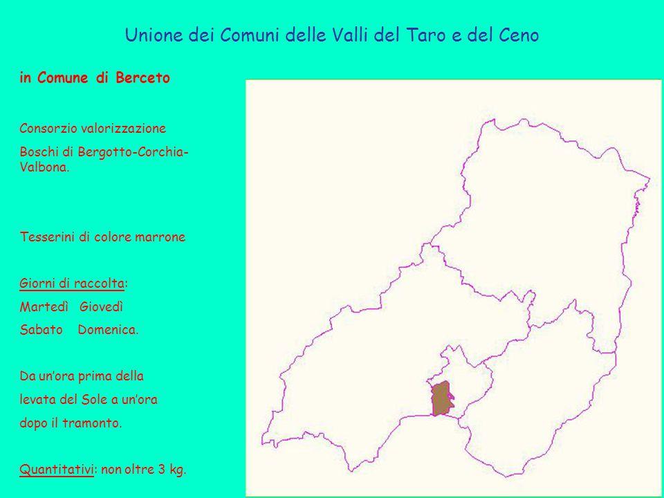 in Comune di Berceto Consorzio valorizzazione Boschi di Bergotto-Corchia- Valbona.