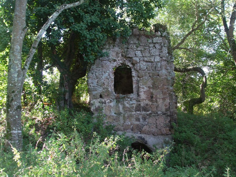 Il Bernini ha incastonato la fontana nelle fondamenta rocciose del palazzo il leone è nell'atto di scuotere la zampa per fare zampillare l'acqua dalla