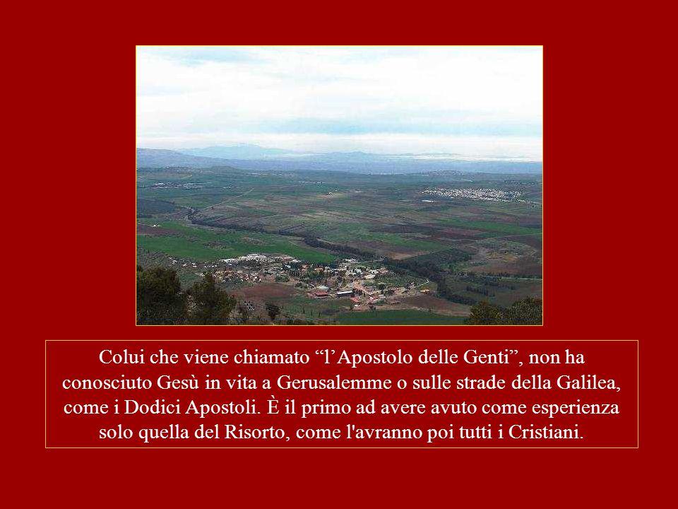 """Colui che viene chiamato """"l'Apostolo delle Genti"""", non ha conosciuto Gesù in vita a Gerusalemme o sulle strade della Galilea, come i Dodici Apostoli."""