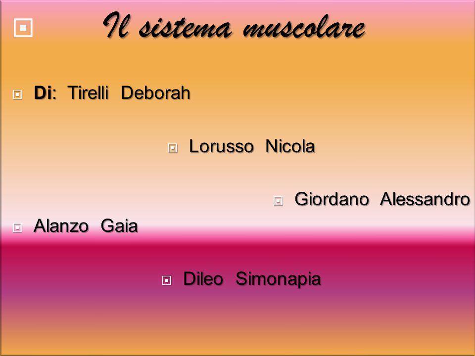 Il sistema muscolare  Il sistema muscolare  Di: Tirelli Deborah  Lorusso Nicola  Giordano Alessandro  Alanzo Gaia  Dileo Simonapia