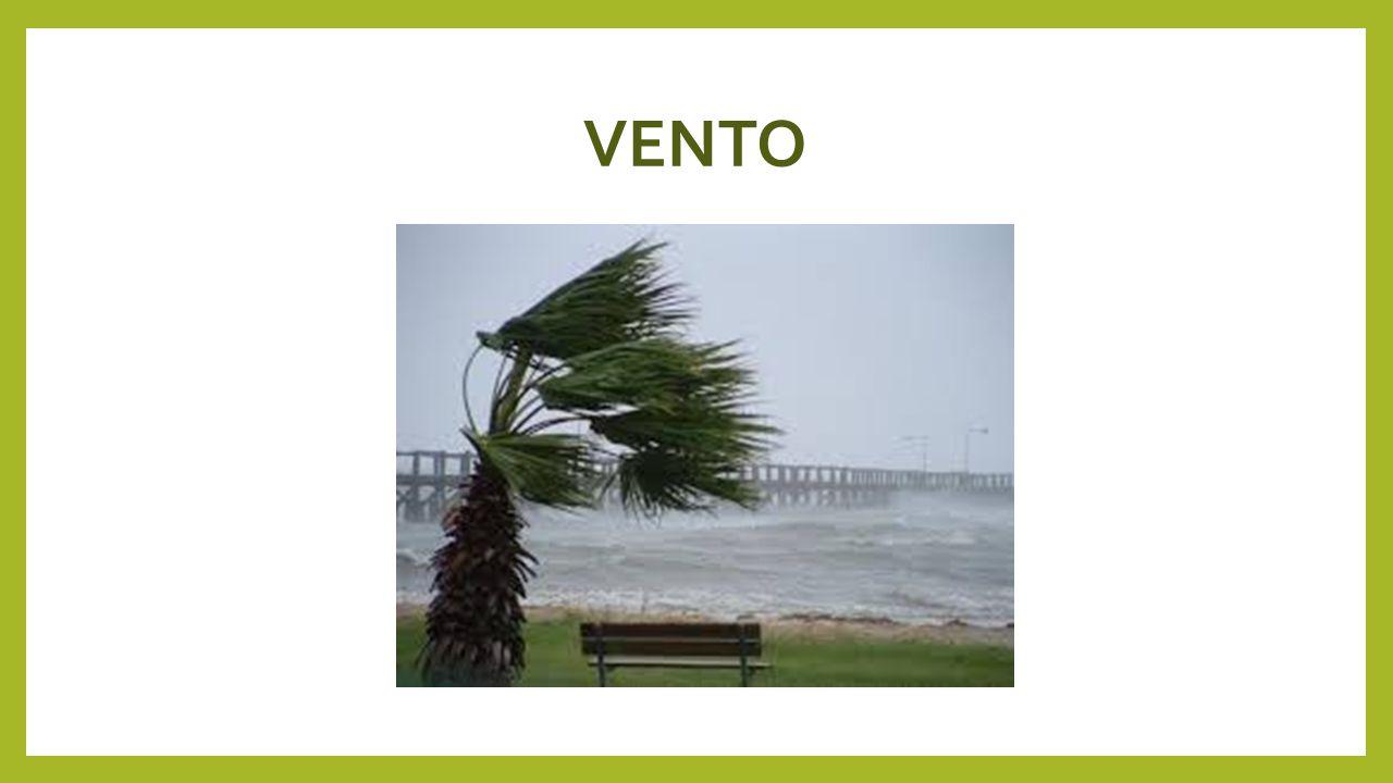 ESPERIENZA DIDATTICA FUORI DALLA CLASSE - Uscire nel cortile in una giornata ventosa (invernale...estiva...primaverile...) per esperire direttamente la sensazione del vento e vederne gli effetti.