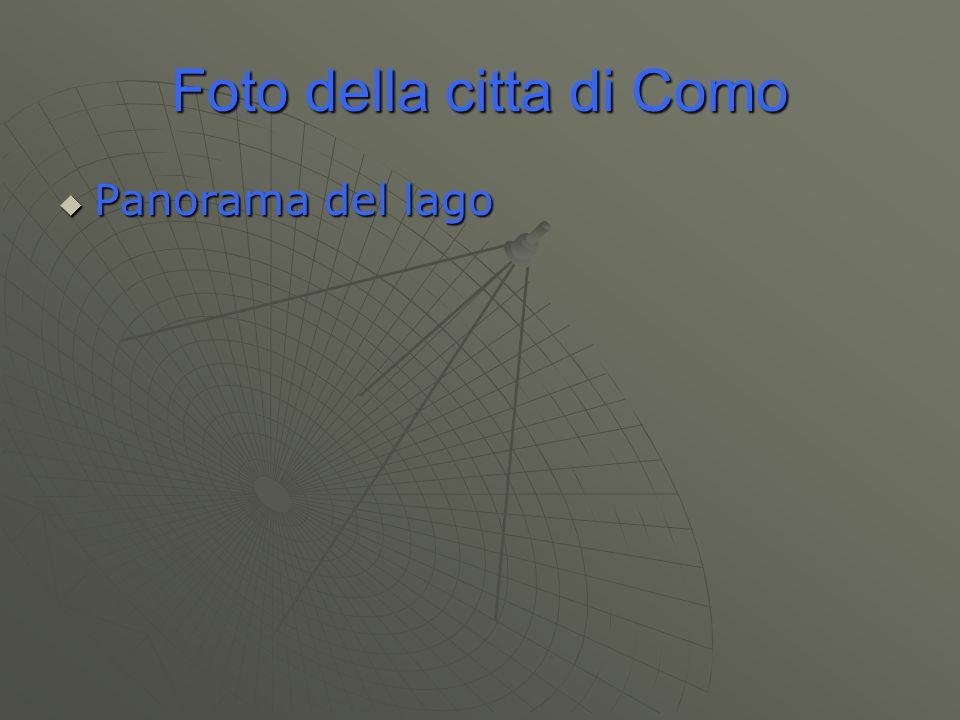 Foto della citta di Como  Panorama del lago