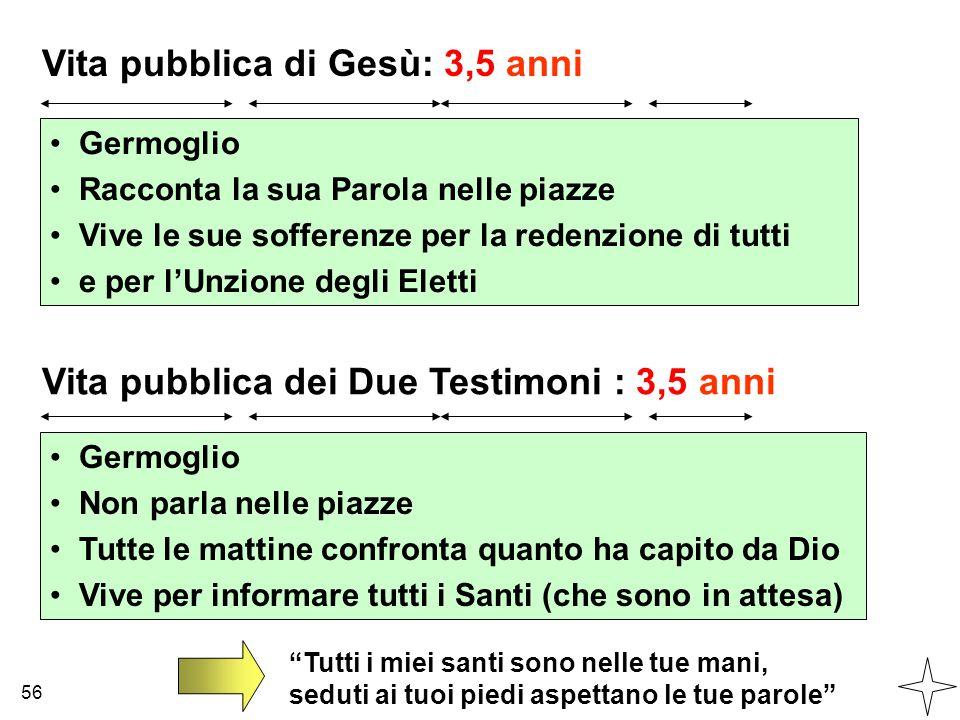 Vita pubblica di Gesù: 3,5 anni Vita pubblica dei Due Testimoni : 3,5 anni Germoglio Racconta la sua Parola nelle piazze Vive le sue sofferenze per la