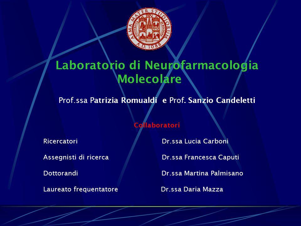 Laboratorio di Neurofarmacologia Molecolare Prof.ssa Patrizia Romualdi e Prof. Sanzio Candeletti Collaboratori Ricercatori Dr.ssa Lucia Carboni Assegn