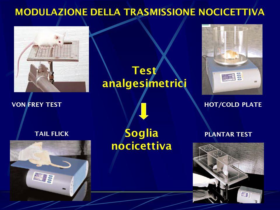 Test analgesimetrici HOT/COLD PLATE TAIL FLICK PLANTAR TEST Soglia nocicettiva MODULAZIONE DELLA TRASMISSIONE NOCICETTIVA VON FREY TEST