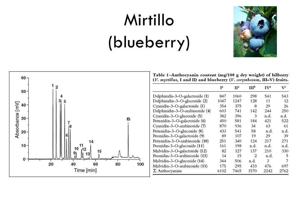 Mirtillo (blueberry)