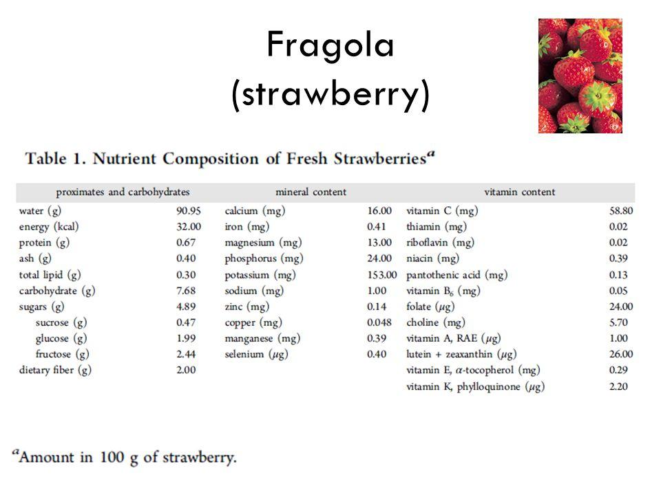Fragola (strawberry)