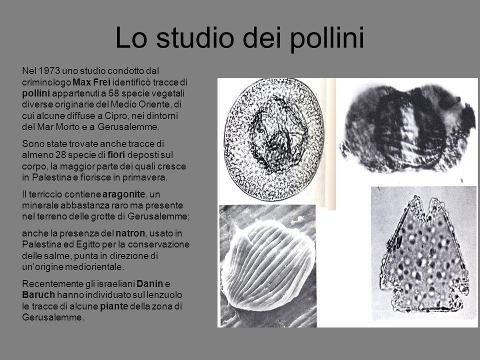 Lo studio dei pollini Nel 1973 uno studio condotto dal criminologo Max Frei identificò tracce di pollini appartenuti a 58 specie vegetali diverse orig