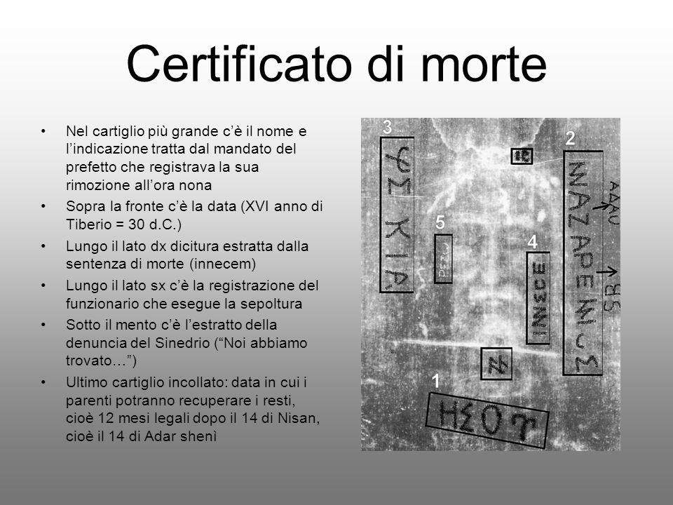 Certificato di morte Nel cartiglio più grande c'è il nome e l'indicazione tratta dal mandato del prefetto che registrava la sua rimozione all'ora nona