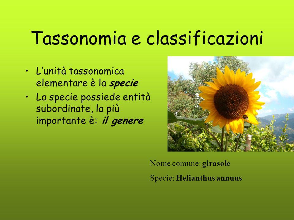 Tassonomia e classificazioni L'unità tassonomica elementare è la specie La specie possiede entità subordinate, la più importante è: il genere Nome com