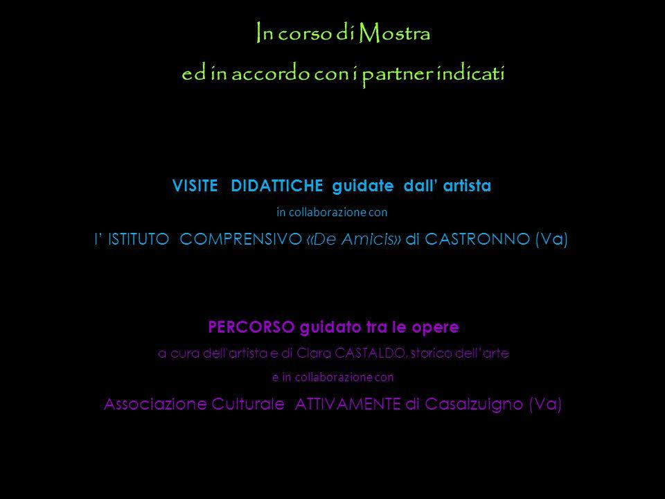 In corso di Mostra ed in accordo con i partner indicati VISITE DIDATTICHE guidate dall' artista in collaborazione con l' ISTITUTO COMPRENSIVO «De Amic