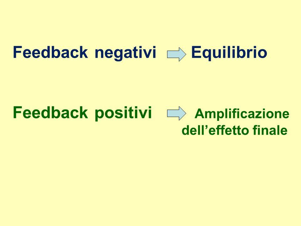 La regolazione e i meccanismi di feedback Nel sistema endocrino è possibile distinguere una serie di livelli gerarchici