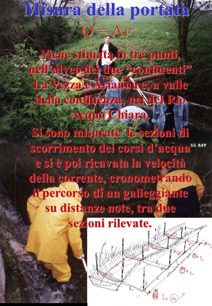 Viene stimata in tre punti, nell'alveo dei due confluenti La Vezza e Arianna e, a valle della confluenza, nel del Rio Acqua Chiara.