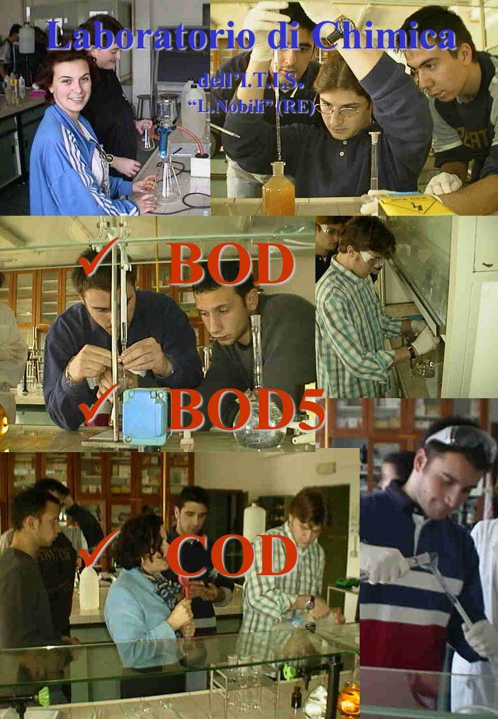 Laboratorio di Chimica dell'I.T.I.S. L.Nobili (RE) BOD BOD BOD5 BOD5 COD COD