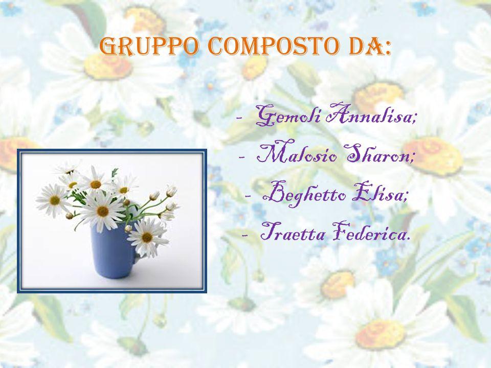 Gruppo composto da: -Gemoli Annalisa; -Malosio Sharon; -Beghetto Elisa; -Traetta Federica.