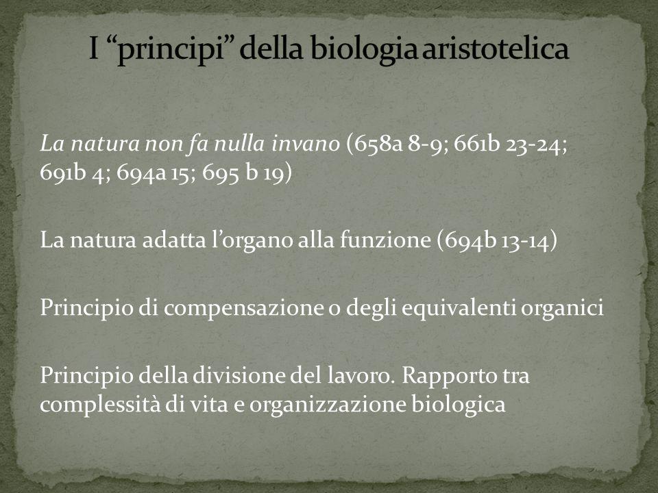 La natura non fa nulla invano (658a 8-9; 661b 23-24; 691b 4; 694a 15; 695 b 19) La natura adatta l'organo alla funzione (694b 13-14) Principio di compensazione o degli equivalenti organici Principio della divisione del lavoro.