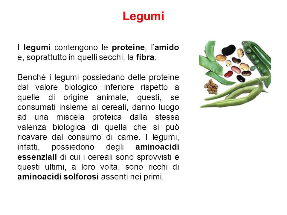 Legumi I legumi contengono le proteine, l'amido e, soprattutto in quelli secchi, la fibra. Benché i legumi possiedano delle proteine dal valore biolog