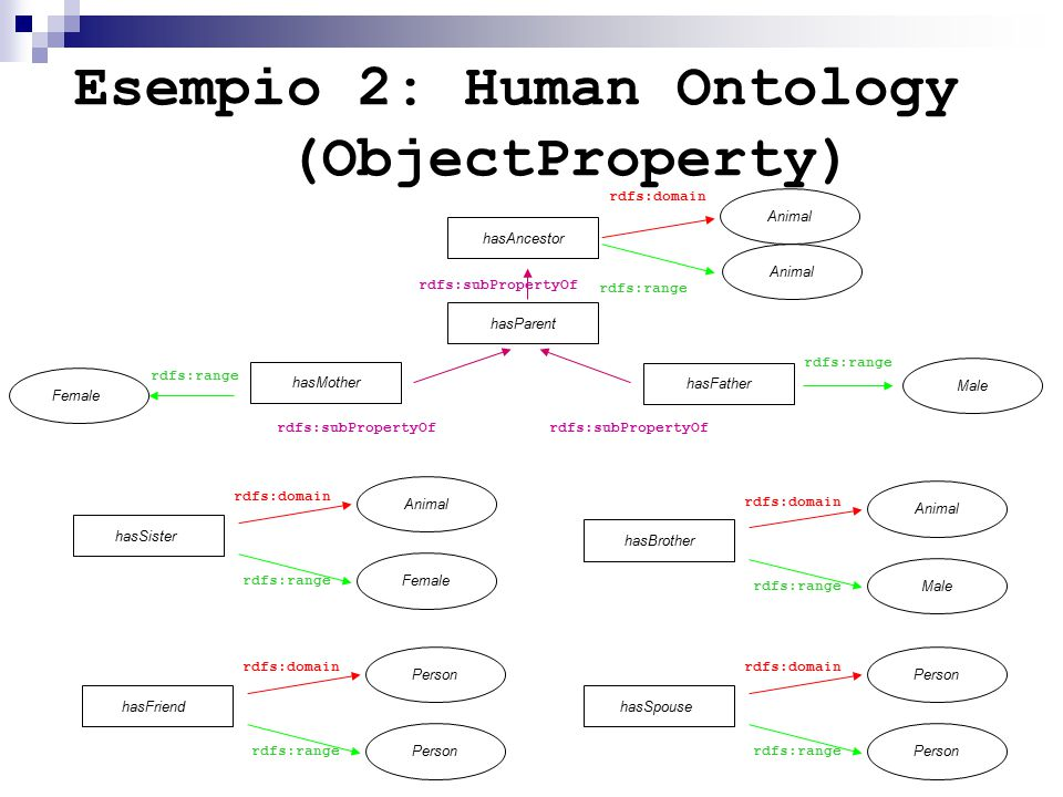 Esempio 2: Human Ontology (ObjectProperty) Animal Male rdfs:range rdfs:domain hasAncestor Animal hasParent hasFather rdfs:subPropertyOf rdfs:range hasMother Female rdfs:subPropertyOf rdfs:range Animal rdfs:range rdfs:domain hasBrother Male Animal rdfs:range rdfs:domain hasSister Female Person rdfs:range rdfs:domain hasFriend Person rdfs:range rdfs:domain hasSpouse Person