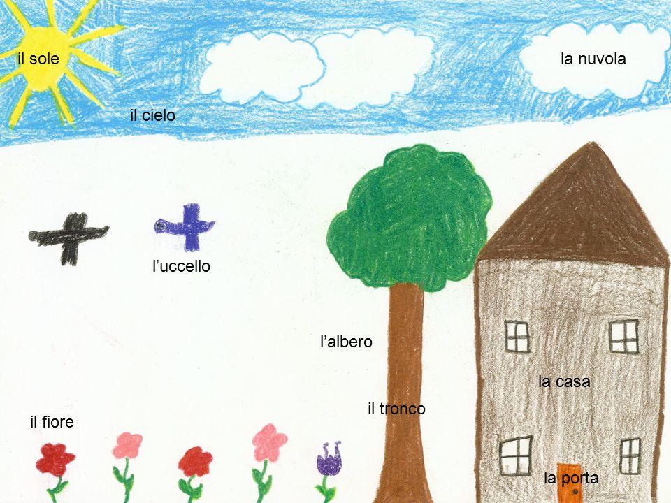 il sole il cielo la nuvola la casa la porta l'albero l'uccello il fiore il tronco