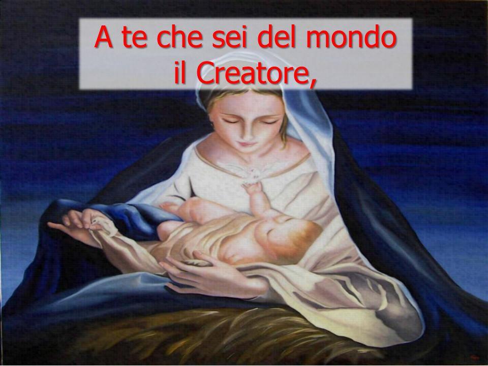 Per noi uomini e per la nostra salvezza discese dal cielo, e per opera dello Spirito santo si è incarnato nel seno della vergine Maria e si è fatto uomo.