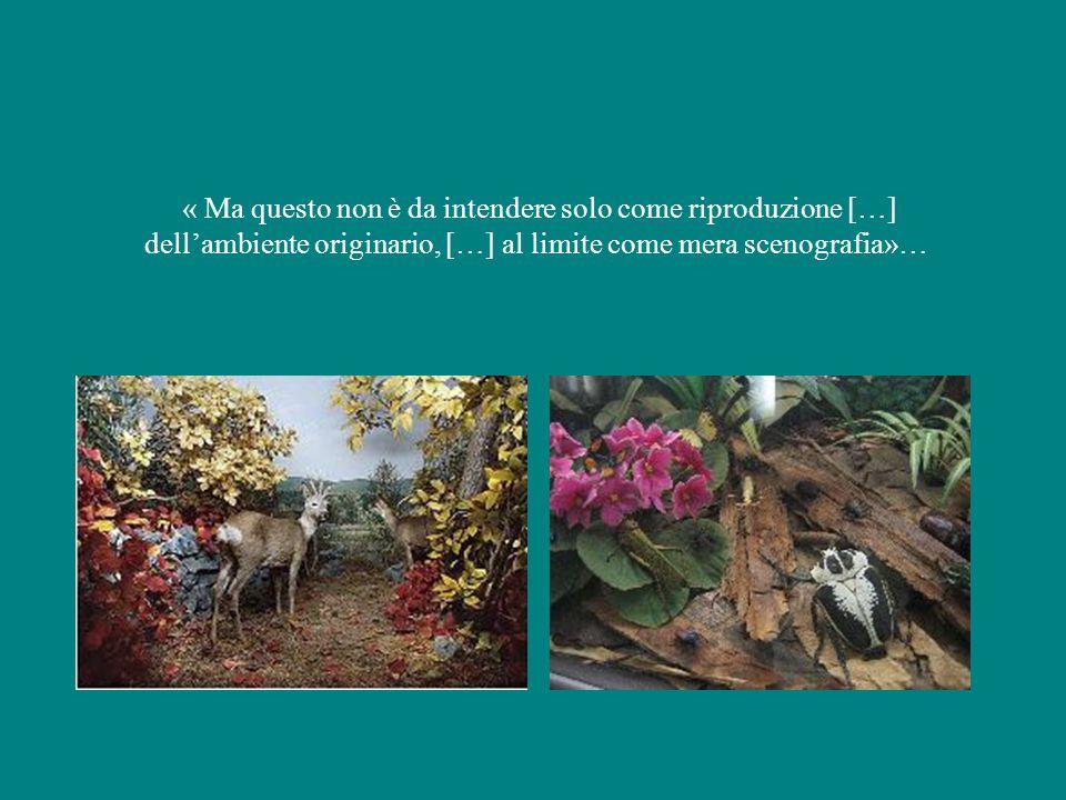 « Ma questo non è da intendere solo come riproduzione […] dell'ambiente originario, […] al limite come mera scenografia»…