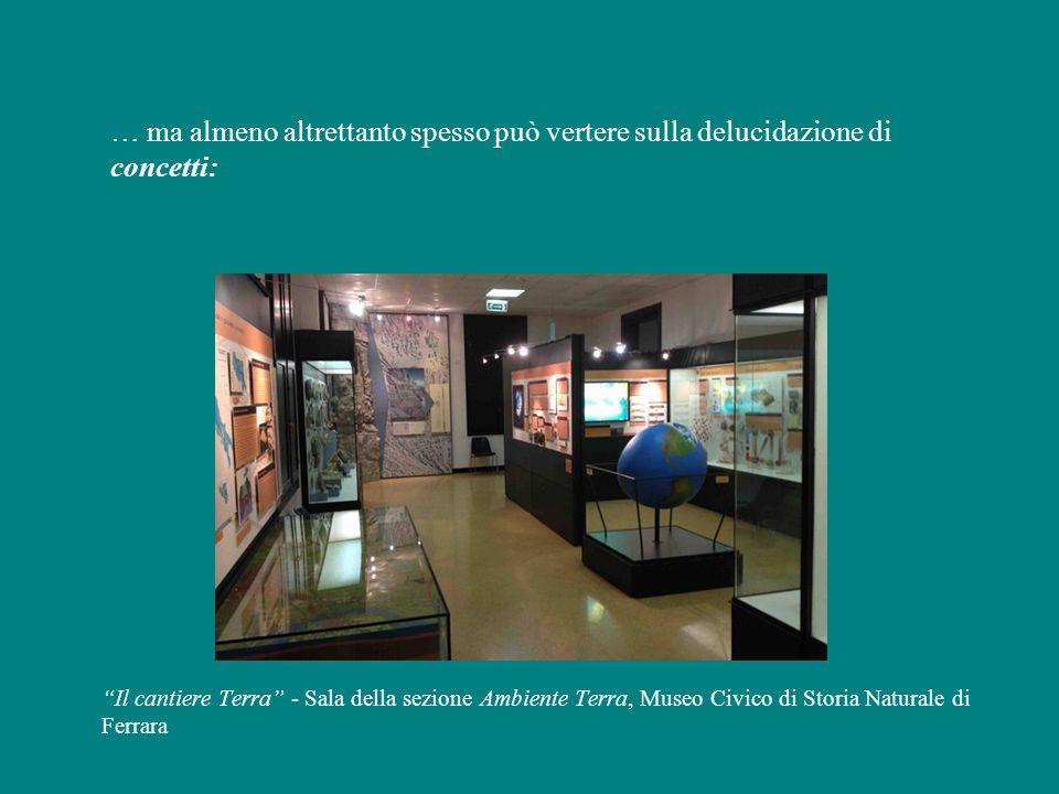 … ma almeno altrettanto spesso può vertere sulla delucidazione di concetti: Il cantiere Terra - Sala della sezione Ambiente Terra, Museo Civico di Storia Naturale di Ferrara