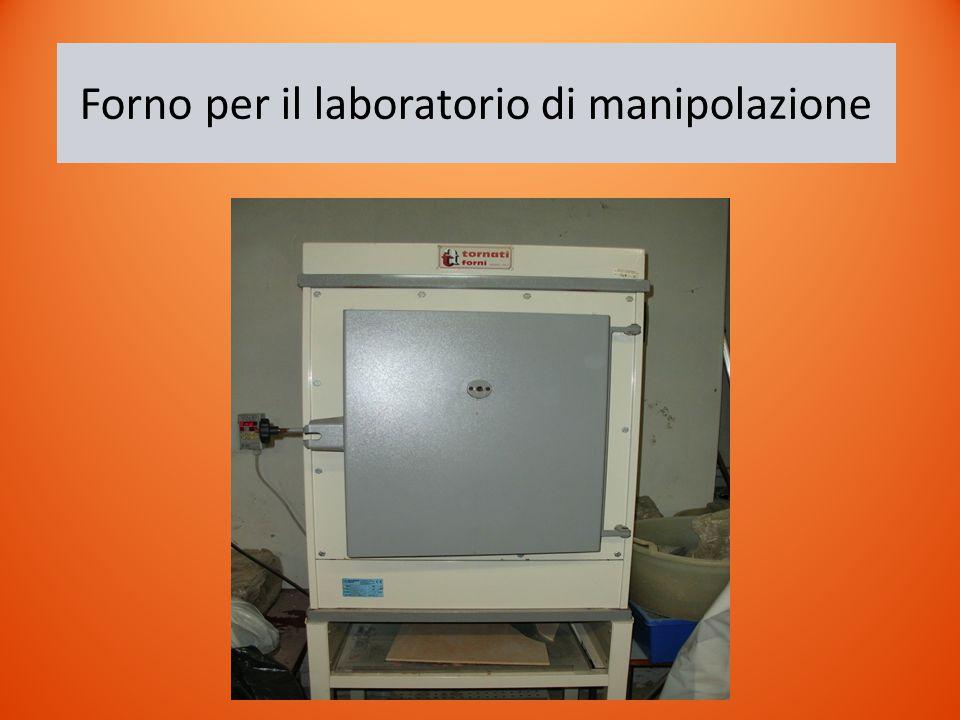 Forno per il laboratorio di manipolazione