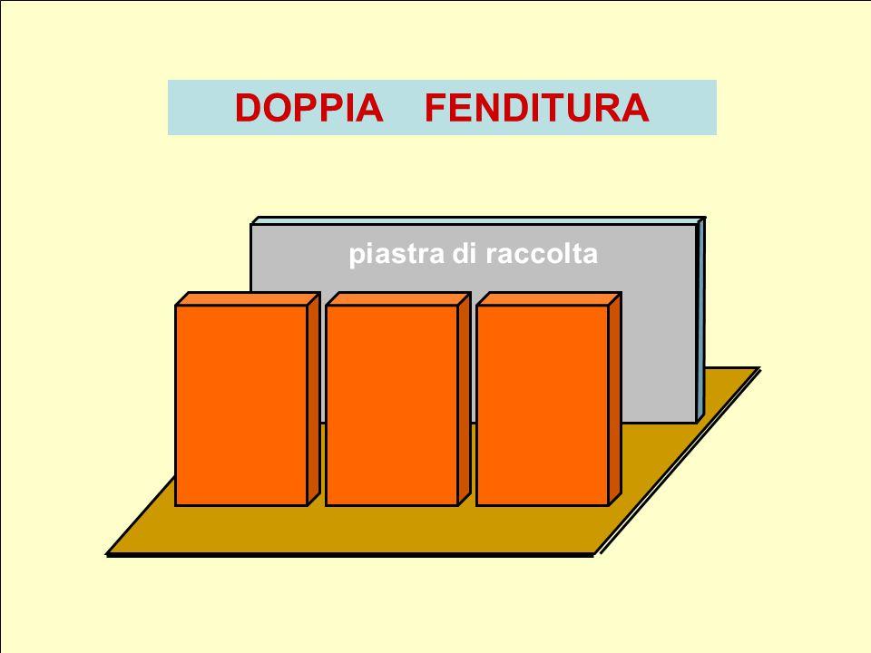 DOPPIA FENDITURA piastra di raccolta