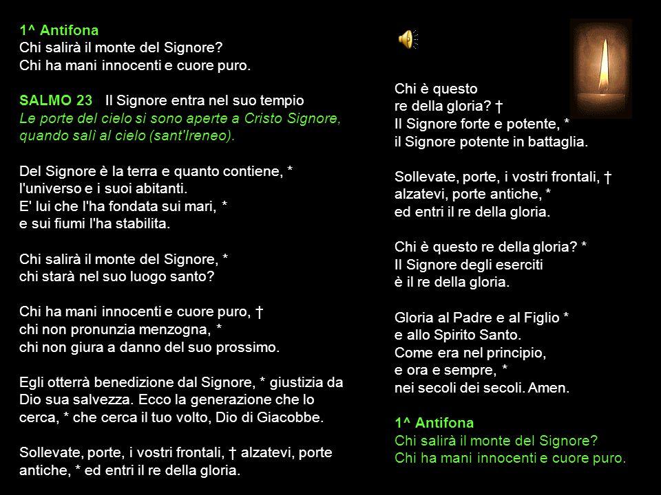 28 LUGLIO 2015 MARTEDÌ - I SETTIMANA DEL SALTERIO DEL T.