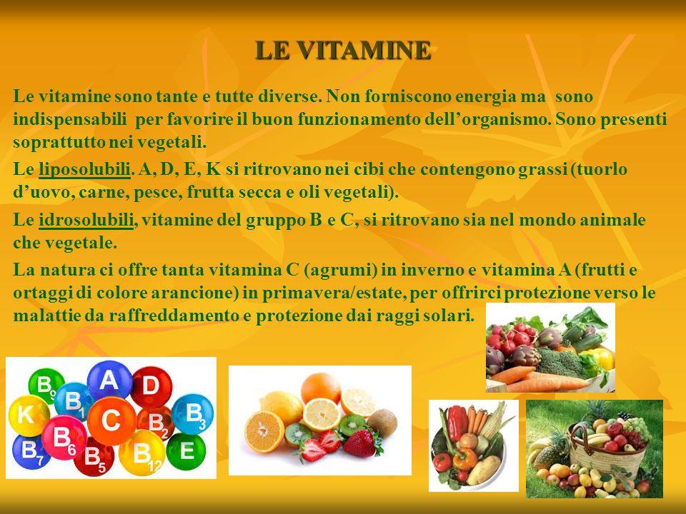 Le vitamine sono tante e tutte diverse. Non forniscono energia ma sono indispensabili per favorire il buon funzionamento dell'organismo. Sono presenti