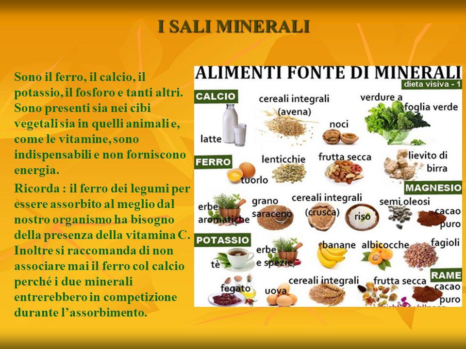 I SALI MINERALI Sono il ferro, il calcio, il potassio, il fosforo e tanti altri. Sono presenti sia nei cibi vegetali sia in quelli animali e, come le
