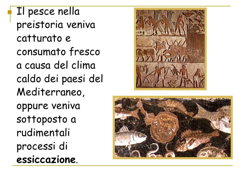 Il pesce nella preistoria veniva catturato e consumato fresco a causa del clima caldo dei paesi del Mediterraneo, oppure veniva sottoposto a rudimenta