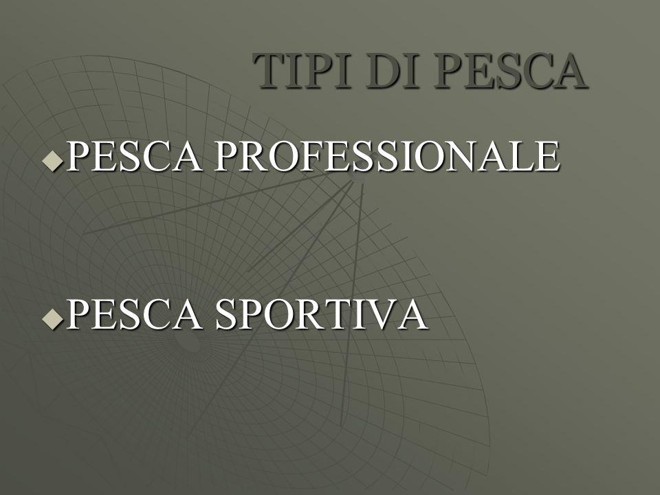TIPI DI PESCA  PESCA PROFESSIONALE  PESCA SPORTIVA