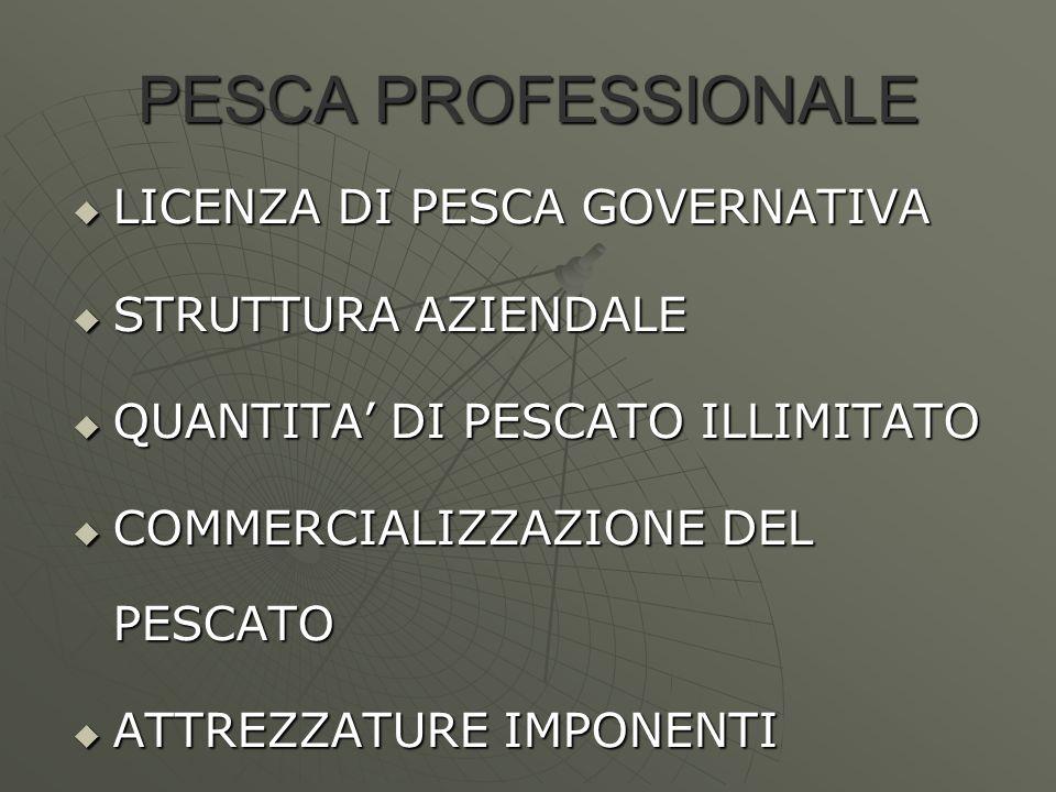 PESCA PROFESSIONALE  LICENZA DI PESCA GOVERNATIVA  STRUTTURA AZIENDALE  QUANTITA' DI PESCATO ILLIMITATO  COMMERCIALIZZAZIONE DEL PESCATO  ATTREZZ