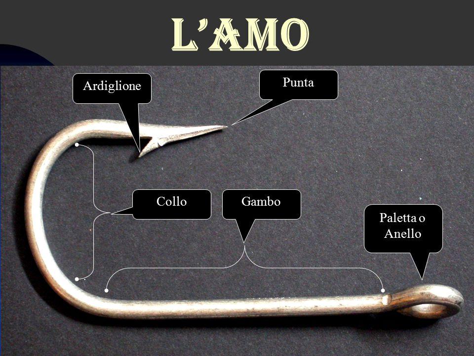 L'amo Paletta o Anello Punta Ardiglione GamboCollo