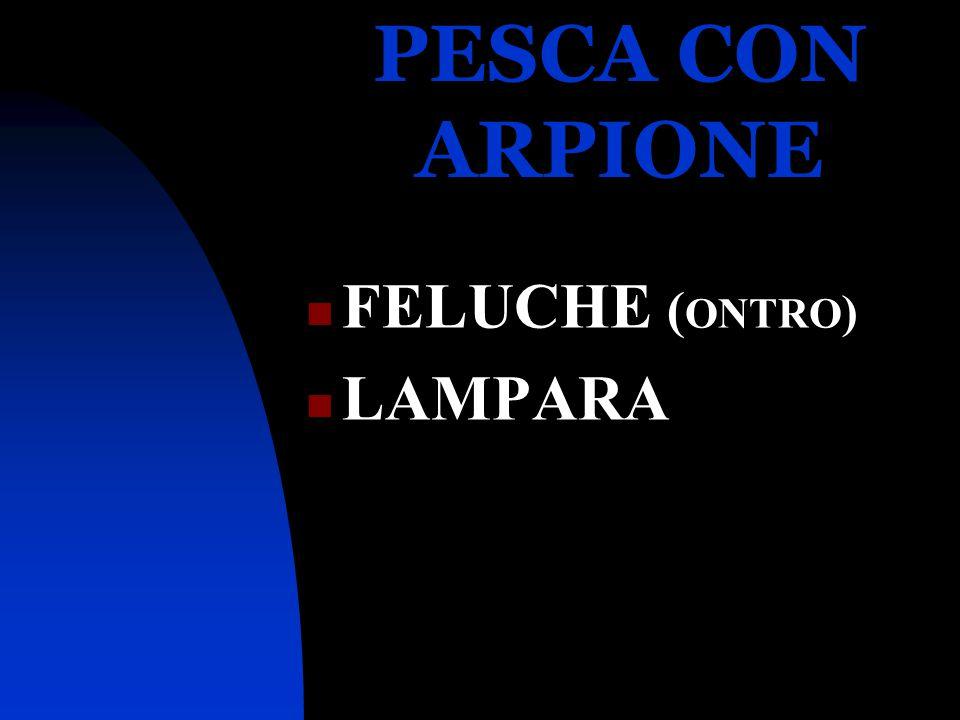 PESCA CON ARPIONE FELUCHE ( ONTRO ) LAMPARA