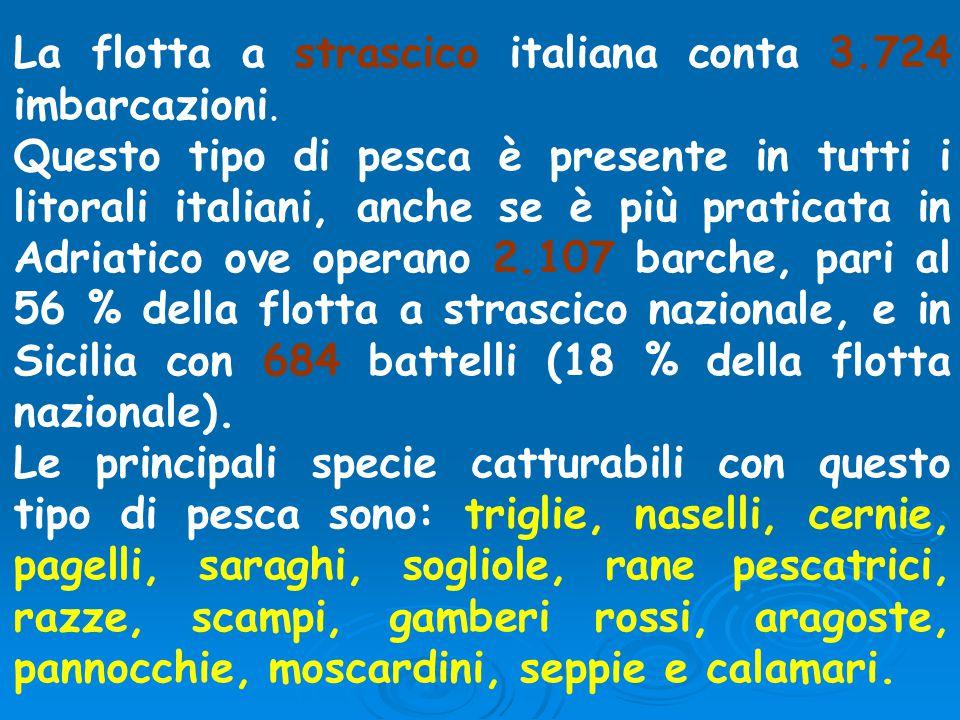 La flotta a strascico italiana conta 3.724 imbarcazioni. Questo tipo di pesca è presente in tutti i litorali italiani, anche se è più praticata in Adr